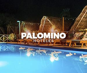 Hospedajes cerca a Palomino La Guajira